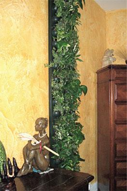Mur vegetal d 39 int rieur - Mur vegetal d interieur ...